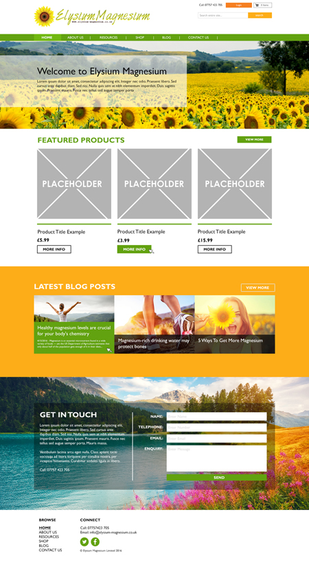 Bespoke Website Example 2 – Homepage