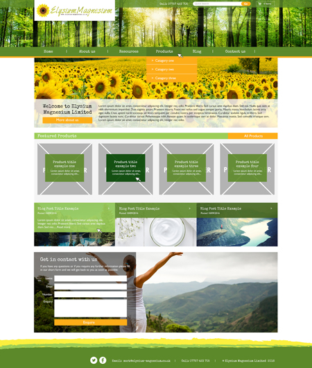 Bespoke website example 2 – Internal Page