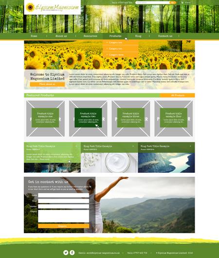 Bespoke website example 2 – Internal Page