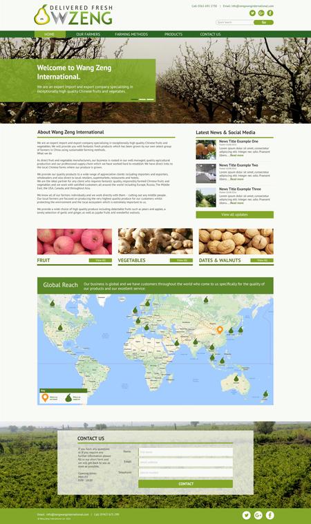 Bespoke Website Example 3 – Homepage