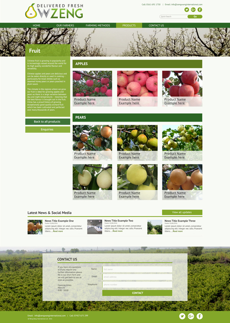 Bespoke website example 3 – Internal Page